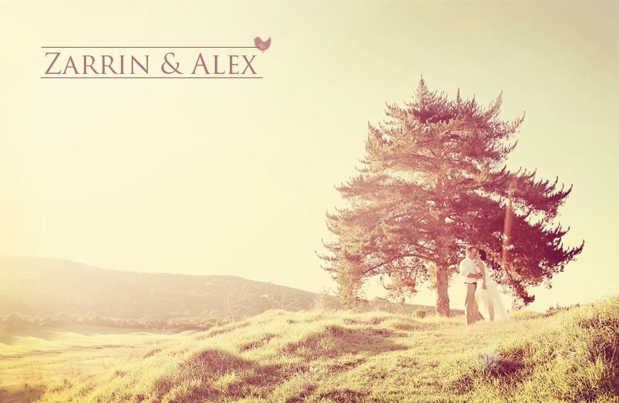 Zarrin & Alex  (1)